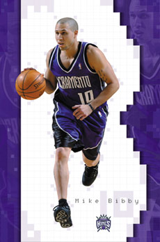 Mike Bibby Poster